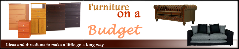 Furniture ideas on a budget